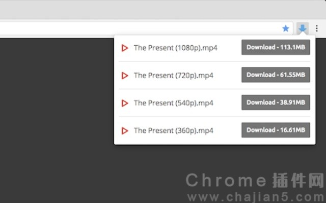 Video Downloader professional网页视频下载器