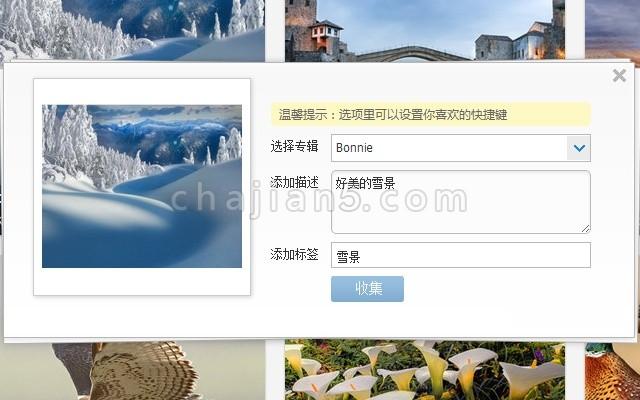 全网图片收集工具堆糖Duitang官方