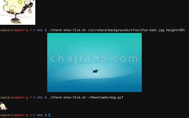 将Chrome当成SSH连接工具的浏览器应用Secure Shell App(Google官方)