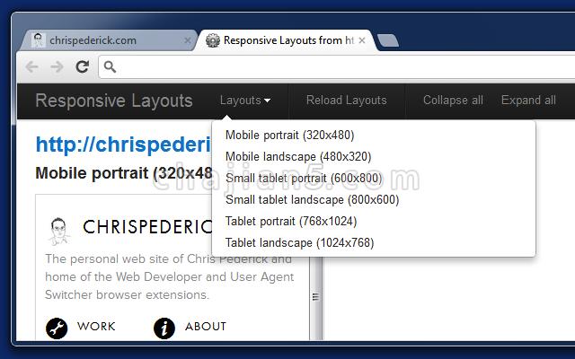 Web Developer将各种web开发工具按钮添加到浏览器