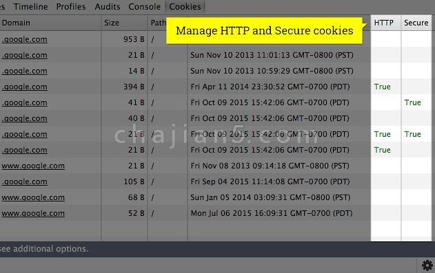 Cookie Inspector编辑、创建和管理cookie