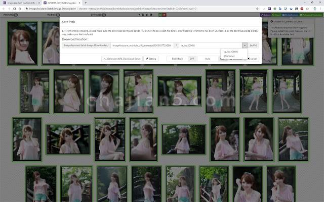 图片助手ImageAssistant批量图片下载器