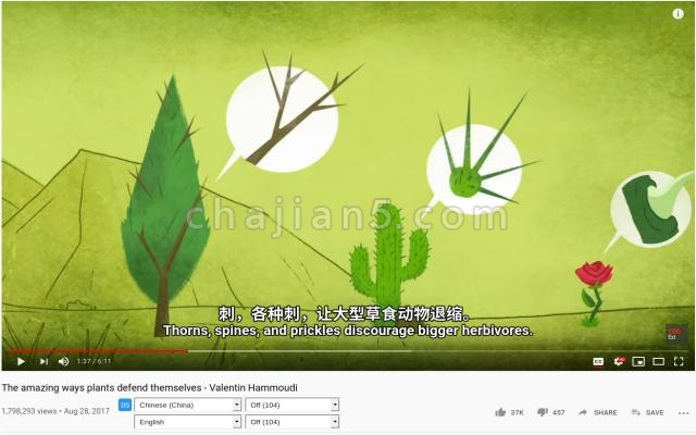 Dualsub 看Youtube的时候显示双语字幕