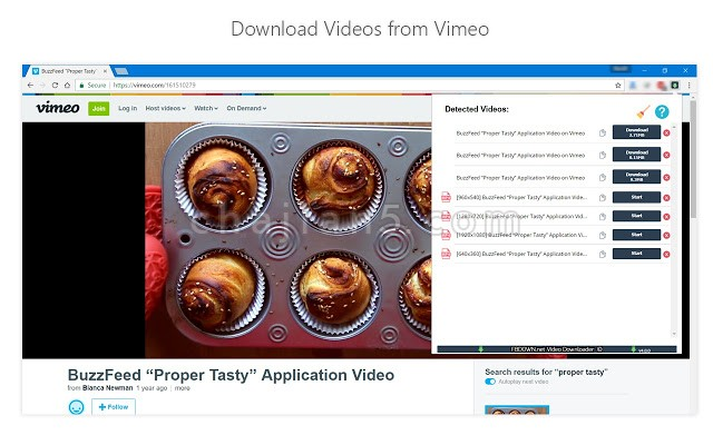 Video Downloader PLUS 视频下载插件