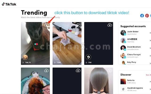Tiktok downloader 从抖音国际站TikTok下载视频