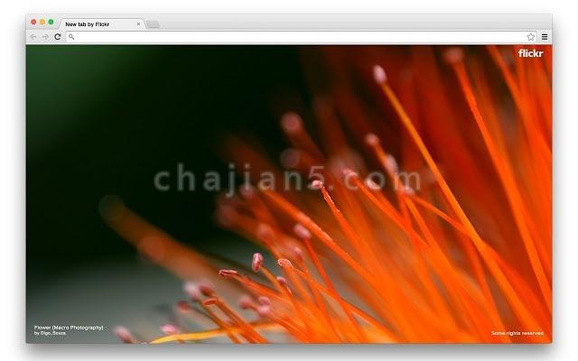 Flickr Tab 每打开Chrome新标签页就显示一张来自Flickr 的美图