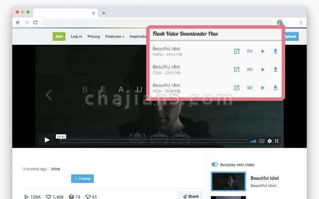 Flash Video Downloader Plus 支持从网站下载各种视频