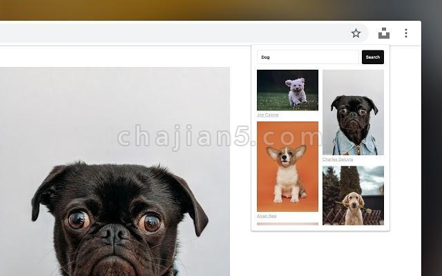 Unsplash For Chrome 从免费图库unflash插图到网页