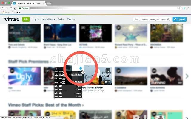 Vimeo™ Video Downloader从vimeo上下载视频(支持嵌入式视频)