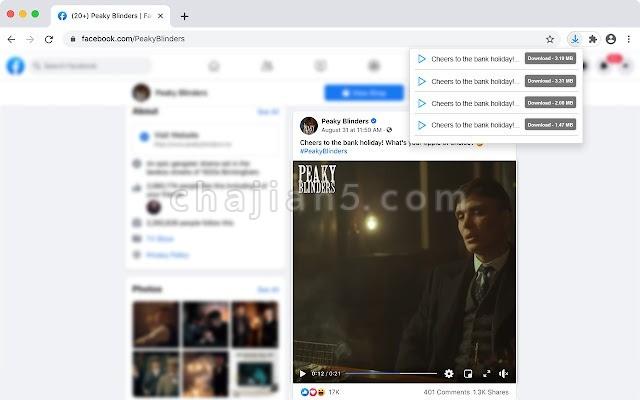 Video Downloader Pro 从网页下载视频的插件