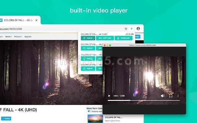 Video Downloader for Web 网页流媒体视频下载插件
