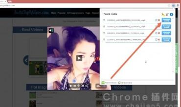 Flash Video Downloader检测网页视频并提供下载