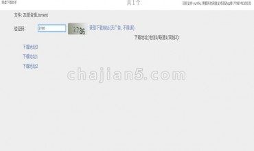 (付费插件)网盘下载助手-解析网盘资源下载地址的工具