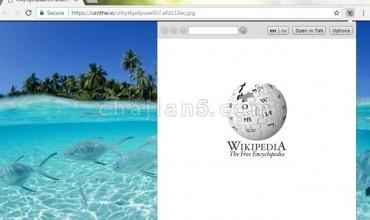 Lookup Companion for Wikipedia(Fixed version)维基百科用户必备扩展