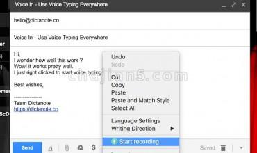 VoiceIn 在网站的文本框中使用语音识别功能
